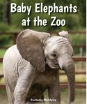 Baby Elephants at the Zoo