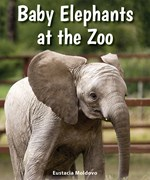 "<h2><a href=""../Baby_Elephants_at_the_Zoo/4422"">Baby Elephants at the Zoo</a></h2>"