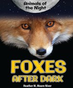 """<h2><a href=""""../Foxes_After_Dark/4603"""">Foxes After Dark: <i></i></a></h2>"""