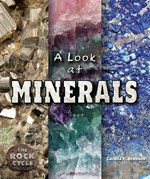 "<h2><a href=""../A_Look_at_Minerals/4569"">A Look at Minerals: <i></i></a></h2>"