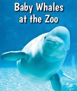 """<h2><a href=""""../books/Baby_Whales_at_the_Zoo/419187"""">Baby Whales at the Zoo: <i></i></a></h2>"""