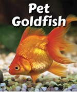 "<h2><a href=""../Pet_Goldfish/419160"">Pet Goldfish: <i></i></a></h2>"