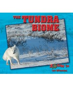 "<h2><a href=""../The_Tundra_Biome/419354"">The Tundra Biome: <i></i></a></h2>"