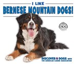 "<h2><a href=""../I_Like_Bernese_Mountain_Dogs/412707"">I Like Bernese Mountain Dogs!: <i></i></a></h2>"