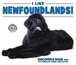"<h2><a href=""../I_Like_Newfoundlands/421743"">I Like Newfoundlands!: <i></i></a></h2>"