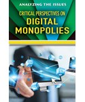 Critical Perspectives on Digital Monopolies