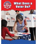 What Does a Voter Do?