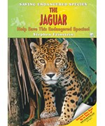 "<h2><a href=""../The_Jaguar/2847"">The Jaguar: <i>Help Save This Endangered Species!</i></a></h2>"