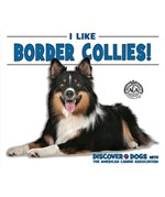 "<h2><a href=""../I_Like_Border_Collies/4691"">I Like Border Collies!: <i></i></a></h2>"
