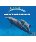 How Dolphins Grow Up