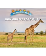 "<h2><a href=""https://www.enslow.com/books/How_Giraffes_Grow_Up/421985"">How Giraffes Grow Up: <i></i></a></h2>"