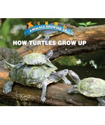 "<h2><a href=""https://www.enslow.com/books/How_Turtles_Grow_Up/421987"">How Turtles Grow Up: <i></i></a></h2>"