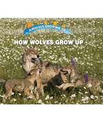 "<h2><a href=""https://www.enslow.com/books/How_Wolves_Grow_Up/421988"">How Wolves Grow Up: <i></i></a></h2>"