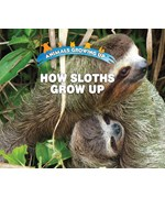 "<h2><a href=""../How_Sloths_Grow_Up/422112"">How Sloths Grow Up: <i></i></a></h2>"