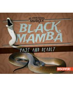 """<h2><a href=""""../Black_Mamba___Fast_and_Deadly/422305"""">Black Mamba: Fast and Deadly: <i></i></a></h2>"""