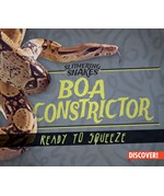 """<h2><a href=""""../Boa_Constrictor___Ready_to_Squeeze/422306"""">Boa Constrictor: Ready to Squeeze: <i></i></a></h2>"""